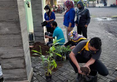 Tanam Cabai, Pegawai Bappeda Litbang Laksanakan Surat Edaran Walikota